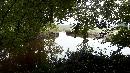 riviertje de reest bij dickeningen