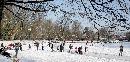 Winterbeeld stadspark Meppel