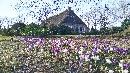 voorjaar Schiphorst