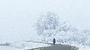 Winter Staphorsterveld